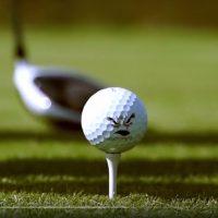WINSTONgolf Senior Open 2017